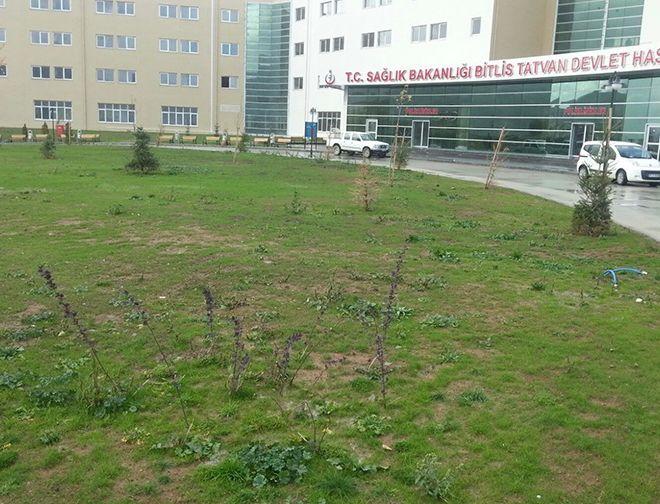 bitlis-tatvan-devlet-hastanesi12